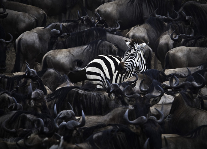 Are You Standing Out From The Competition