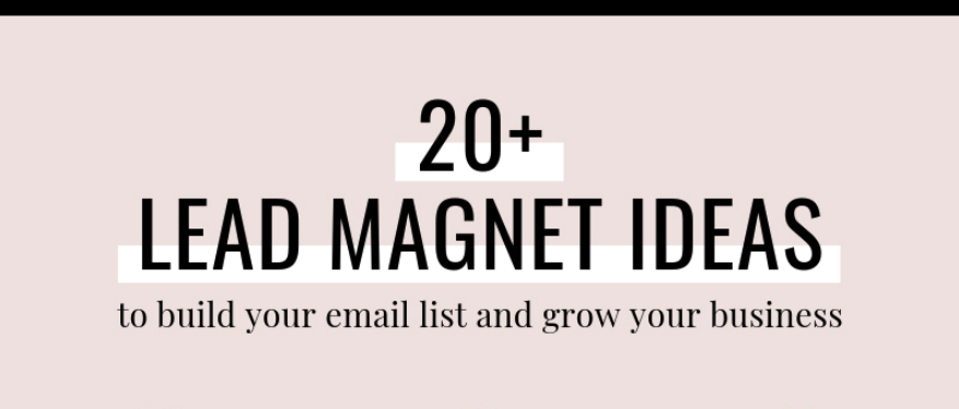Grow Your Email List Rapidly Using These 20+ Lead Magnets (Infographic)